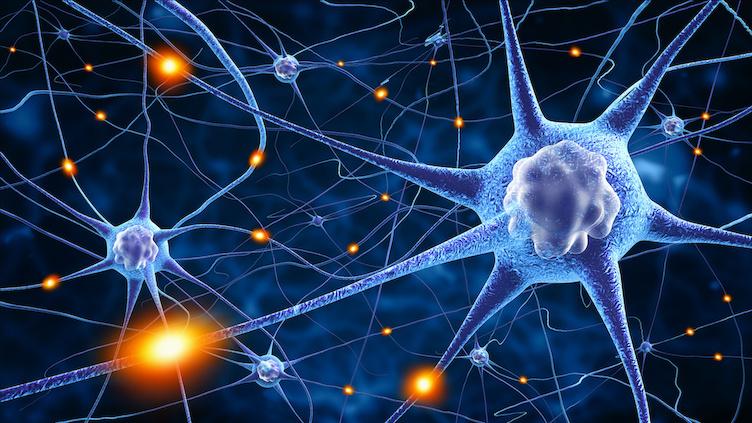 ALS: Die AmyotropheLateralsklerose